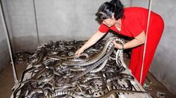 Nghề đáng sợ: Nuôi rắn trong nhà
