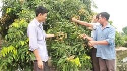 """Hội Nông Dân Hưng Yên: """"Ba thêm"""" với  Câu lạc bộ Làm vườn"""