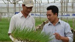 """Đổi mới 4 """"trụ cột"""" khuyến nông  gắn với tái cơ cấu nông nghiệp"""
