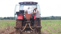 Khởi sắc cơ giới hóa trồng lúa ở Đồng Nai