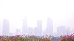 """Sài Gòn thành """"Đà Lạt thứ 2"""": Do cháy rừng Indonesia?"""