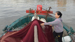 Cơ cực phận nữ nhi bám biển - Kỳ cuối: Tóc dài trên biển cả