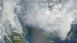Ảnh: Cháy rừng tồi tệ ở Indonesia gây loang khói bụi mù mịt