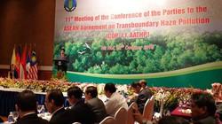 """Thống nhất """"10 điểm"""" giảm khói mù xuyên ASEAN"""