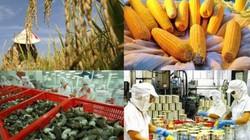 Nhật, Mỹ vẫn bảo hộ nhiều nông sản khi cam kết với Việt Nam trong TPP