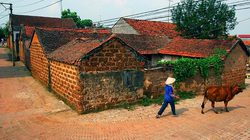 Làng cổ Đường Lâm hướng đến di tích quốc gia đặc biệt