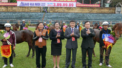 Tưng bừng khai hội đua ngựa Báo NTNN-Phú Sơn Bắc Ninh