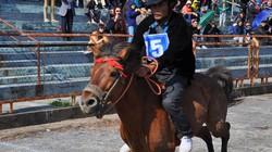 Ngã ngựa vẫn không bỏ cuộc
