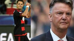 Tỏa sáng ở Leverkusen, Chicharito quay lại oán trách Van Gaal