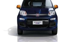 """Fiat Topolino có thể sẽ được """"hồi sinh"""""""
