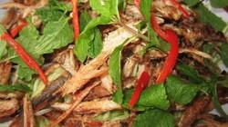Lai rai khô cá lóc đồng trộn gỏi xoài chua
