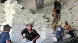 Hàng loạt doanh nghiệp xuất khẩu gạo bị Mỹ cảnh báo