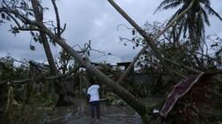 """Siêu bão """"Quái vật"""" khiến 870 người chết ở Haiti"""