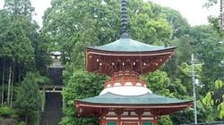 """Ngôi đền treo hàng trăm """"bộ ngực"""" phụ nữ ở Nhật Bản"""