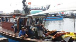 TT- Huế chi trả bồi thường cho dân bị thiệt hại môi trường biển