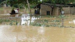 Bộ Y tế cảnh báo hàng loạt dịch bệnh xảy ra sau mưa lũ