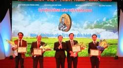 """Phân bón Lâm Thao đồng hành cùng các """"siêu"""" nông dân"""