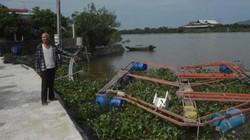 Hà Tĩnh: Xót xa hàng trăm bè cá tiền tỷ trôi theo lũ