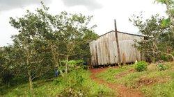 Những ẩn khuất sau vụ 3 người bị bắn chết ở Đắk Nông