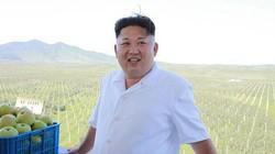 Kim Jong-un uống 10 chai Bordeaux đắt tiền trong bữa tối?