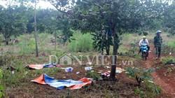 Vụ nổ súng ở Đăk Nông: Khởi tố thêm 2 nghi can