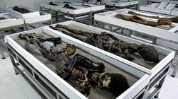 Hàng loạt xác ướp cổ nhất thế giới có nguy cơ phân hủy