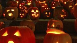 Đi chơi Halloween, hai thiếu niên Mỹ bị bắn chết