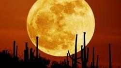 Ngày 14.11, người Việt Nam được ngắm siêu trăng lớn nhất thế kỷ