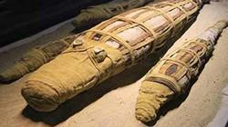 Phát hiện xác ướp cá sấu 2.500 năm ở Ai Cập