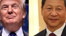 'Tuần trăng mật' giữa Donald Trump và Tập Cận Bình 'ngọt' đến cỡ nào?