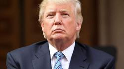 """Trump sẽ """"hầu toà lập tức"""" nếu khôi phục tra tấn nước"""