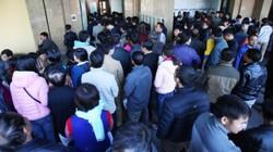 Ảnh: Hàng trăm người dân xếp hàng từ mờ sáng đổi giấy phép lái xe