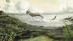 Hóa thạch động vật đầu tiên đi lại trên đất liền