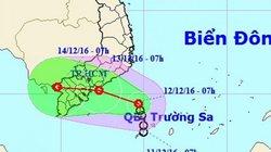 """TP.HCM bất ngờ """"đón"""" áp thấp nhiệt đới giữa mùa khô"""