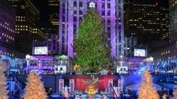 Choáng ngợp khung cảnh đường phố thế giới đón Noel