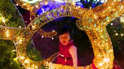 Ảnh: Giáng sinh lung linh trên từng ngôi nhà ở Hà Nội