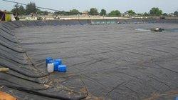 Quảng Trị: TP.Đông Hà không được đền bù thiệt hại môi trường biển?
