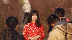 Bức ảnh được báo Mỹ chọn đại diện cho Việt Nam 2016
