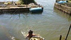 TT- Huế: Cá lồng chết bất thường, dân tố do thủy điện giữ nước?