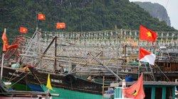 Quảng Ninh: Ngắm giàn đèn khủng trên tàu cá chuẩn bị ra Biển Đông