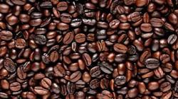 Giá cà phê hôm nay 6.10: Giảm sát 42.000 đ/kg, DN cao su, hồ tiêu Malaysia muốn hợp tác với VN