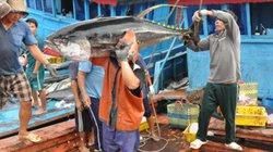 """Vì sao EU dự định rút """"thẻ vàng"""" với thủy sản Việt Nam?"""