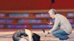 Vua hài từng khiến Huỳnh Thánh Y phải quỳ lạy