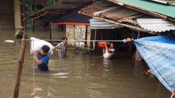 Tiểu thương Nghệ An thiệt hại nặng do mưa lớn