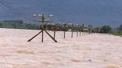 8 người chết và mất tích, nhiều đê đập vỡ do mưa lũ
