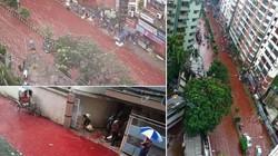 Ớn lạnh với lễ hiến tế đầy máu ở Bangladesh