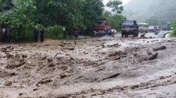 Nghệ An: 8 người chết và mất tích, 3.000ha lúa màu bị ngập trắng