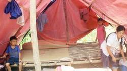 Hậu quả mưa lũ: Nông dân mất trắng tài sản, bí bách việc mưu sinh