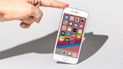 iPhone 6S chụp ảnh vẫn đẹp, bạn không cần lên đời iPhone 8