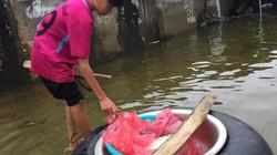 Ở vùng rốn lũ Chương Mỹ, Hà Nội: Người dân vẫn ăn mì tôm qua ngày